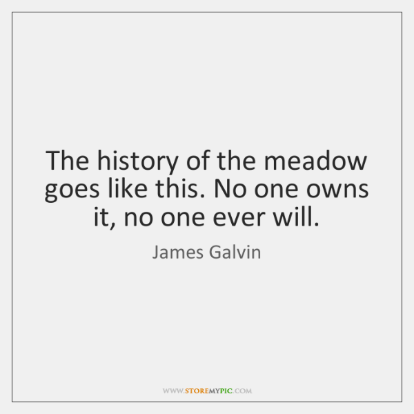 The history of the meadow goes like this. No one owns it, ...