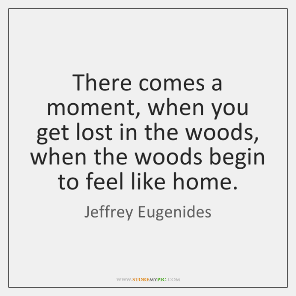 There comes a moment, when you get lost in the woods, when ...