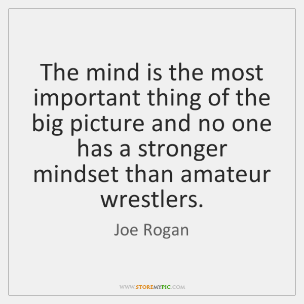 The mind is the most important thing of the big picture and ...