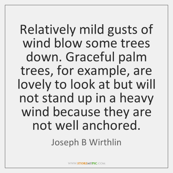 Relatively mild gusts of wind blow some trees down. Graceful palm trees, ...