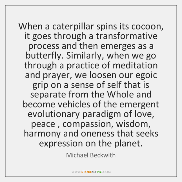 When a caterpillar spins its cocoon, it goes through a transformative process ...
