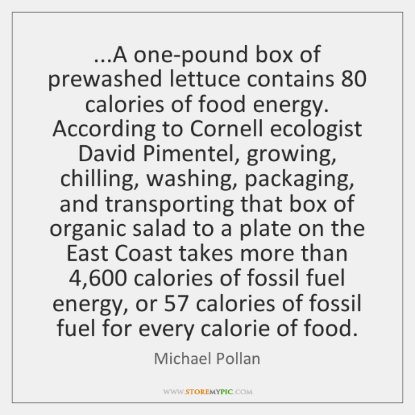 ...A one-pound box of prewashed lettuce contains 80 calories of food energy. According ...