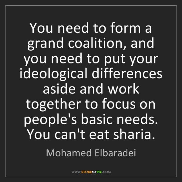 Mohamed Elbaradei: You need to form a grand coalition, and you need to put...