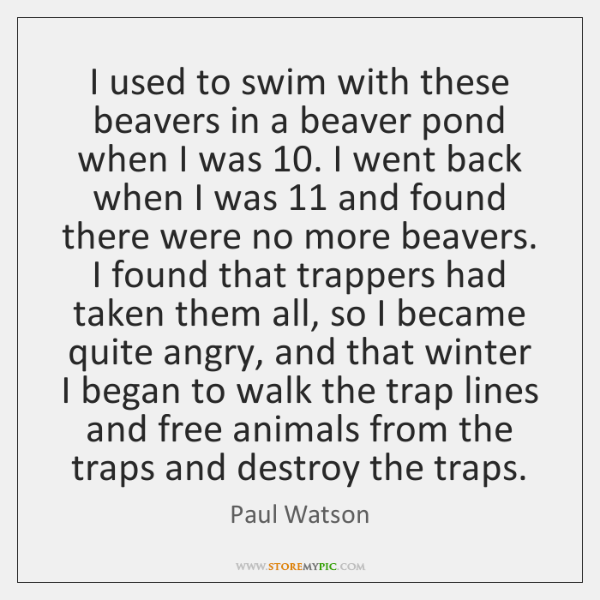 I used to swim with these beavers in a beaver pond when ...