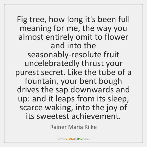 Fig tree, how long it's been full meaning for me, the way ...