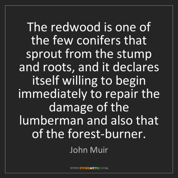 John Muir: The redwood is one of the few conifers that sprout from...