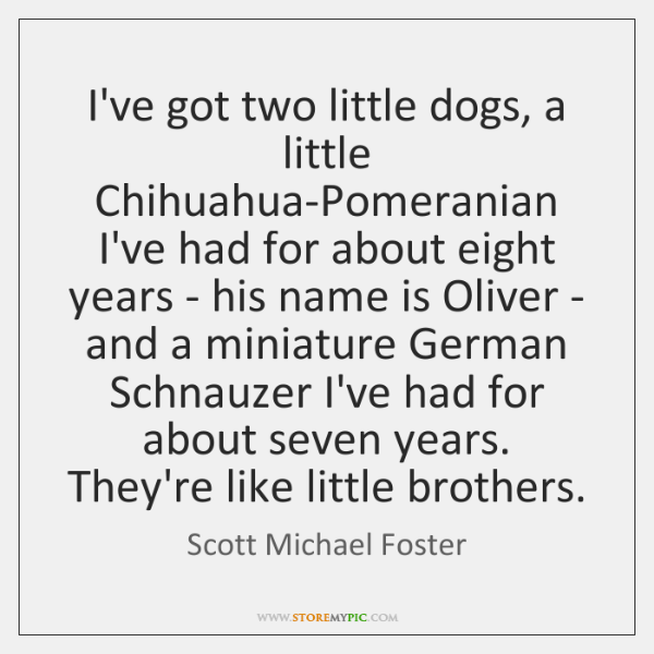 I've got two little dogs, a little Chihuahua-Pomeranian I've had for about ...