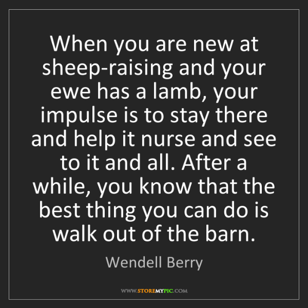 Wendell Berry: When you are new at sheep-raising and your ewe has a...