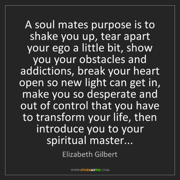 Elizabeth Gilbert: A soul mates purpose is to shake you up, tear apart your...