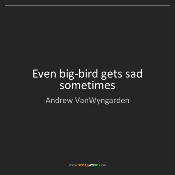 Andrew VanWyngarden: Even big-bird gets sad sometimes