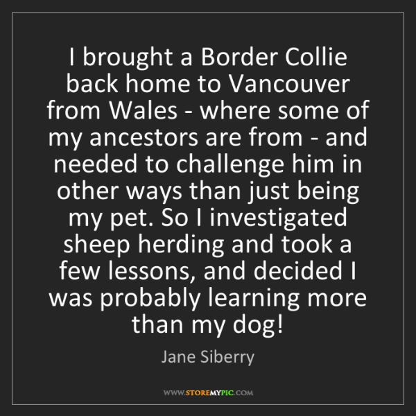 Jane Siberry: I brought a Border Collie back home to Vancouver from...