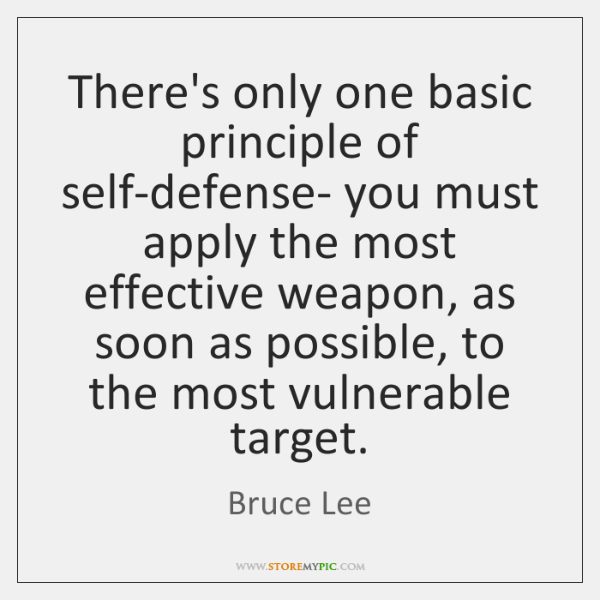 There's only one basic principle of self-defense- you must apply the most ...