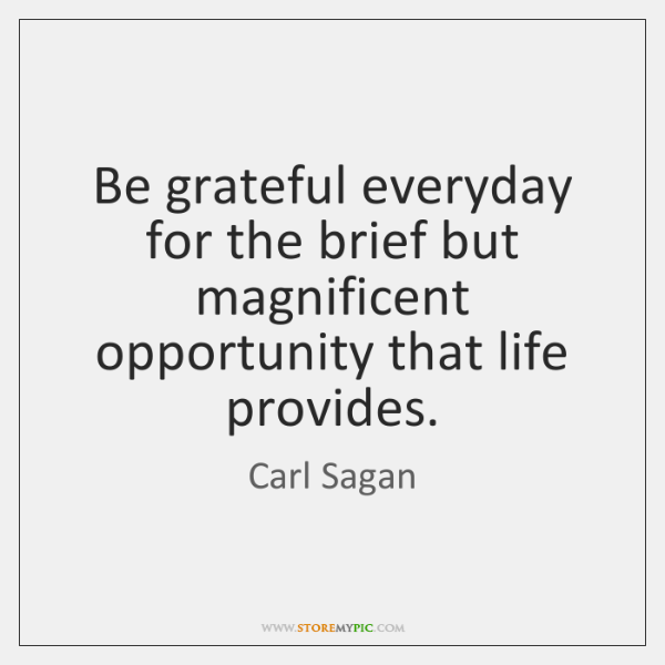 Be grateful everyday for the brief but magnificent opportunity that life provides.