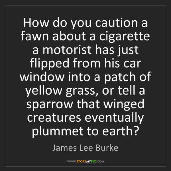 James Lee Burke: How do you caution a fawn about a cigarette a motorist...