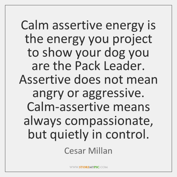 Calm assertive energy is the energy you project to show your dog ...