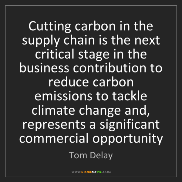 Tom Delay: Cutting carbon in the supply chain is the next critical...