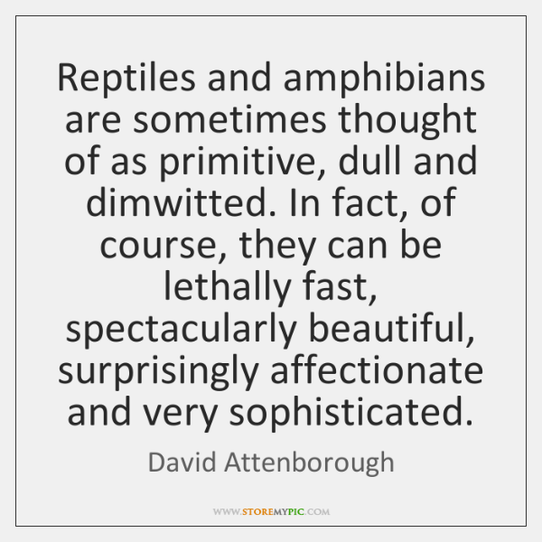 Reptiles and amphibians are sometimes thought of as primitive, dull and dimwitted. ...
