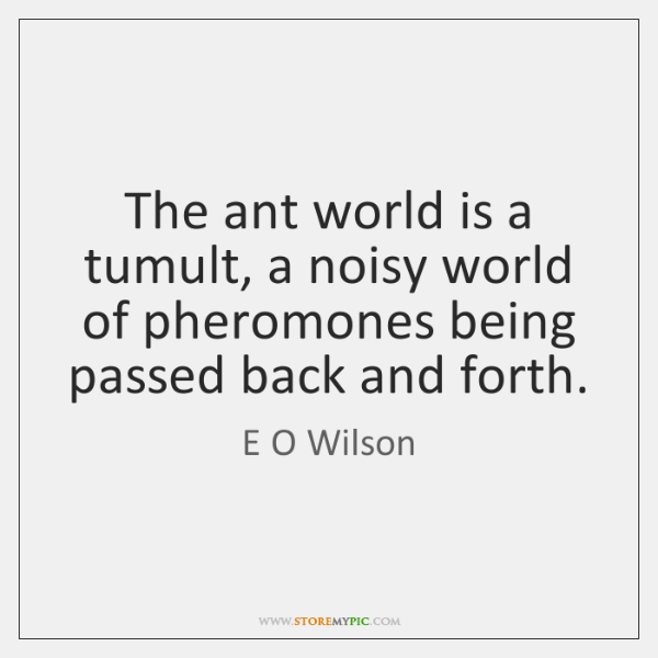 The ant world is a tumult, a noisy world of pheromones being ...