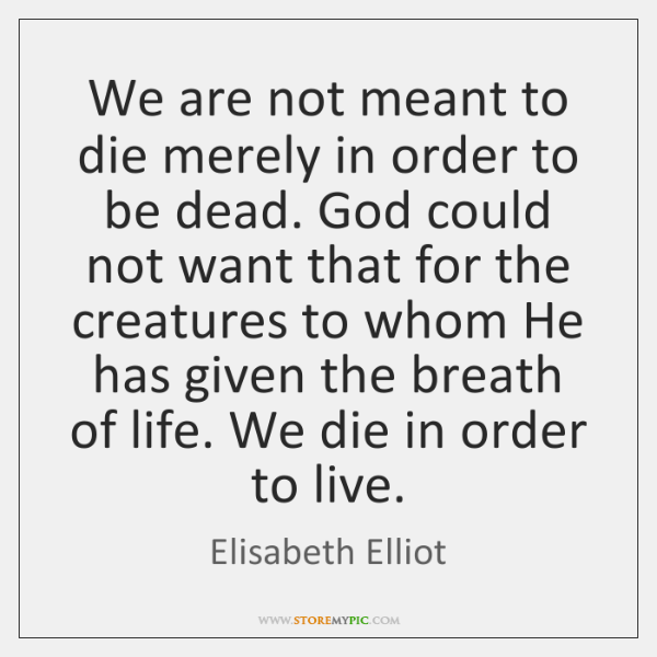 We Are Not Meant To Die Merely In Order To Be Dead Storemypic
