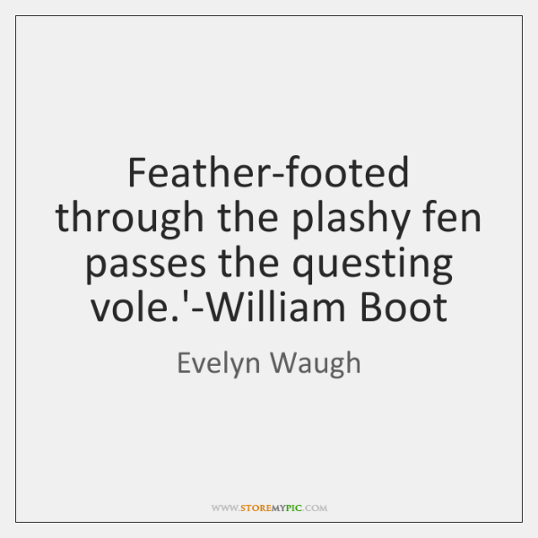 Feather-footed through the plashy fen passes the questing vole.'-William Boot