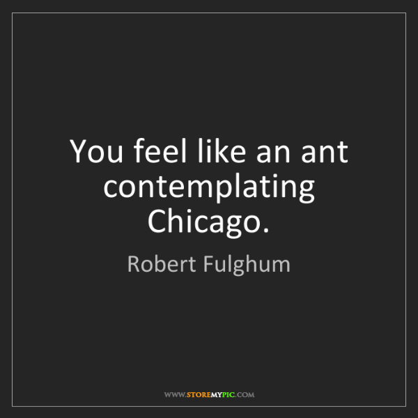 Robert Fulghum: You feel like an ant contemplating Chicago.
