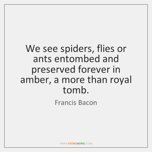 We see spiders, flies or ants entombed and preserved forever in amber, ...