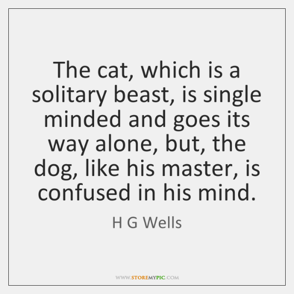 The cat, which is a solitary beast, is single minded and goes ...