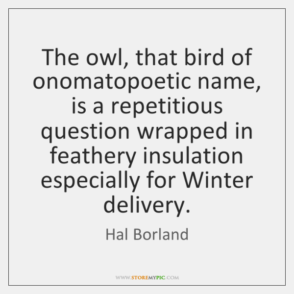 The owl, that bird of onomatopoetic name, is a repetitious question wrapped ...