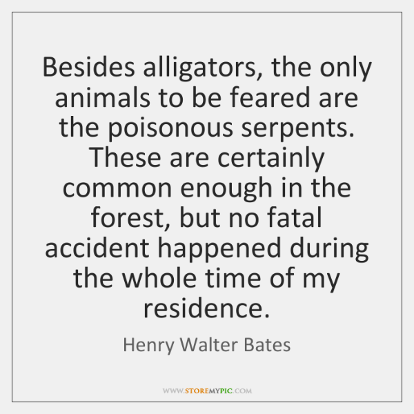 Besides alligators, the only animals to be feared are the poisonous serpents. ...