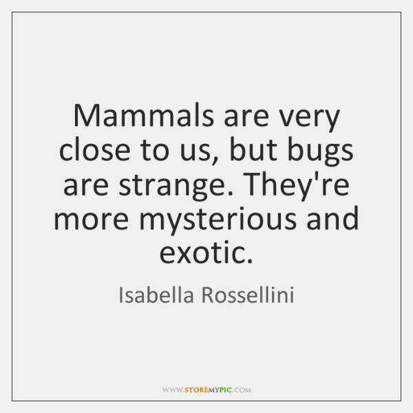 Mammals are very close to us, but bugs are strange. They're more ...