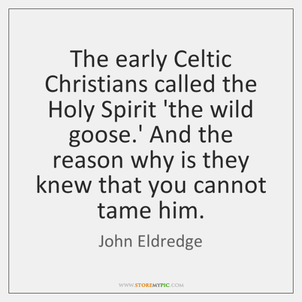 The early Celtic Christians called the Holy Spirit 'the wild goose.' ...
