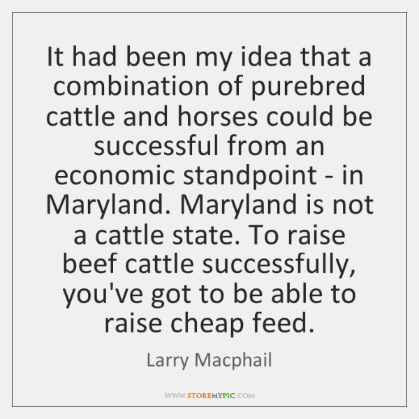It had been my idea that a combination of purebred cattle and ...