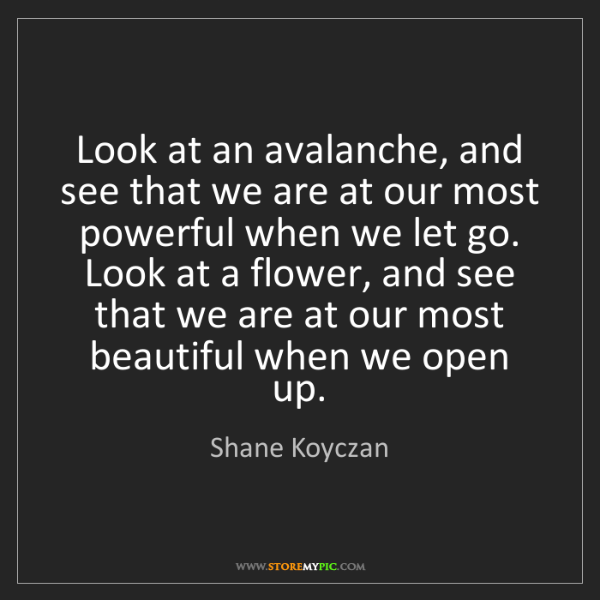 Shane Koyczan: Look at an avalanche, and see that we are at our most...