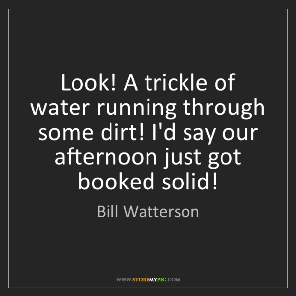 Bill Watterson: Look! A trickle of water running through some dirt! I'd...