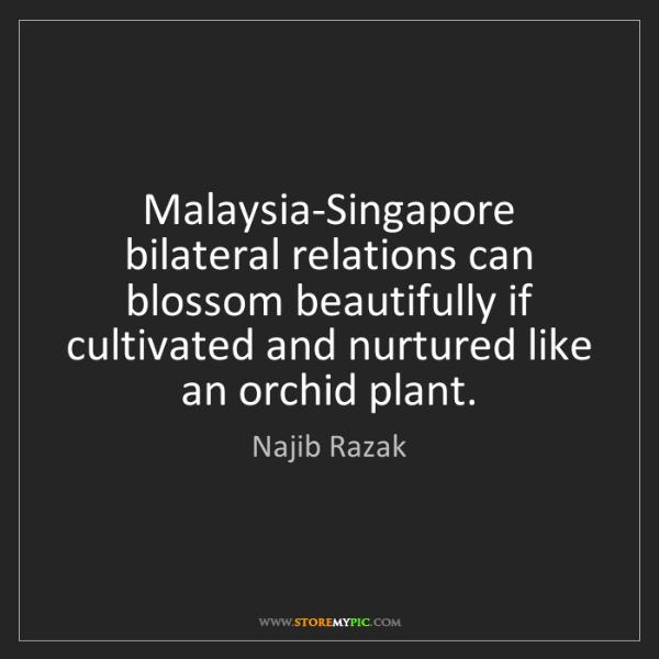 Najib Razak: Malaysia-Singapore bilateral relations can blossom beautifully...