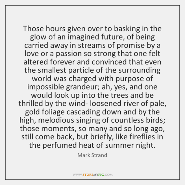 Those hours given over to basking in the glow of an imagined ...