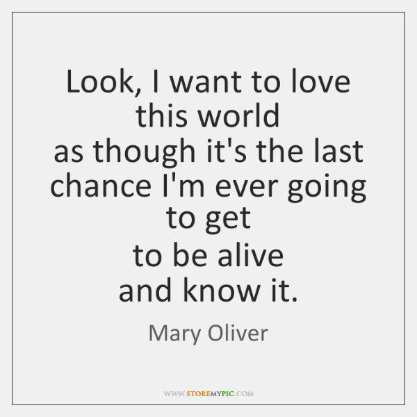 Mary Oliver Love Quotes Fair Mary Oliver Quotes  Storemypic