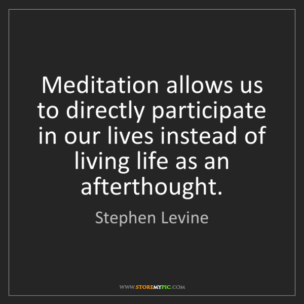 Stephen Levine: Meditation allows us to directly participate in our lives...