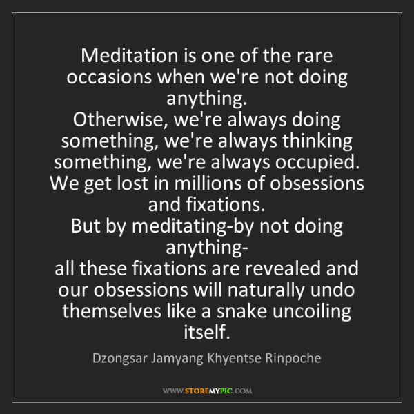 Dzongsar Jamyang Khyentse Rinpoche: Meditation is one of the rare occasions when we're not...