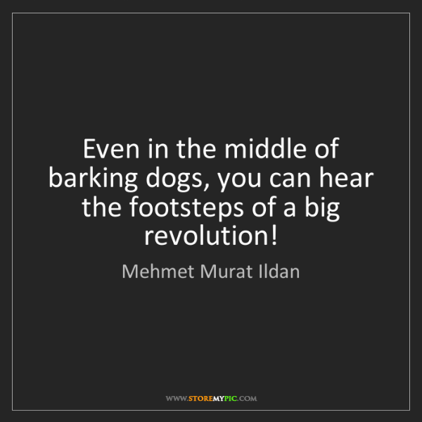 Mehmet Murat Ildan: Even in the middle of barking dogs, you can hear the...