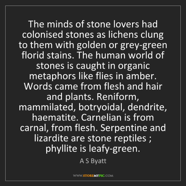 A S Byatt: The minds of stone lovers had colonised stones as lichens...