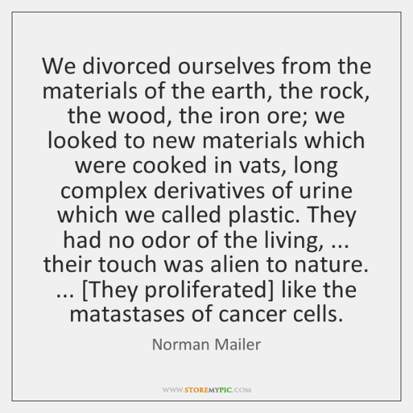 We divorced ourselves from the materials of the earth, the rock, the ...