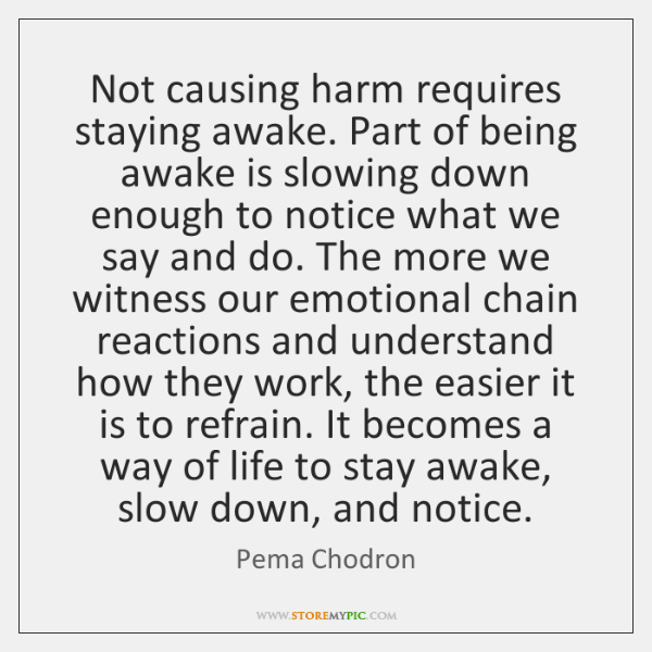 Not causing harm requires staying awake. Part of being awake is slowing ...