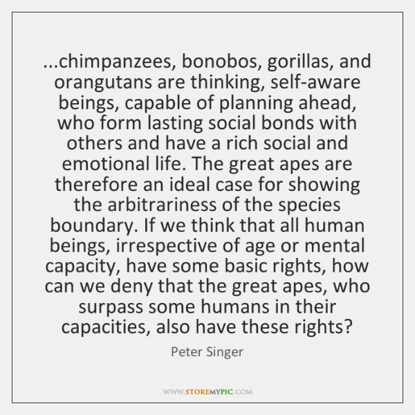 ...chimpanzees, bonobos, gorillas, and orangutans are thinking, self-aware beings, capable of planni