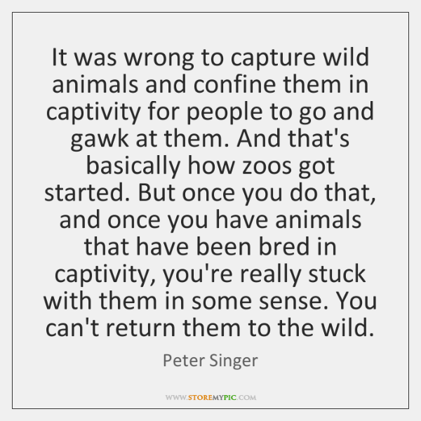It was wrong to capture wild animals and confine them in captivity ...