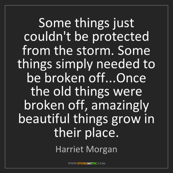 Harriet Morgan: Some things just couldn't be protected from the storm....