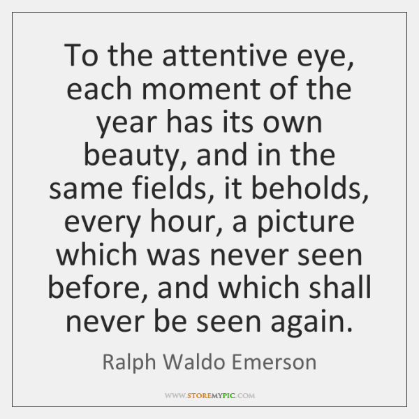 To the attentive eye, each moment of the year has its own ...