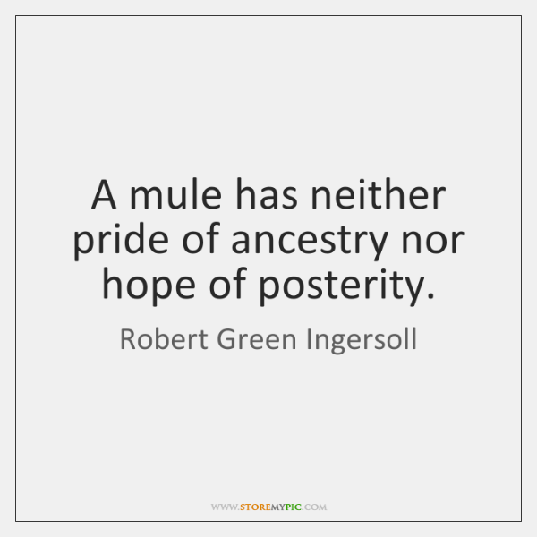 A mule has neither pride of ancestry nor hope of posterity.