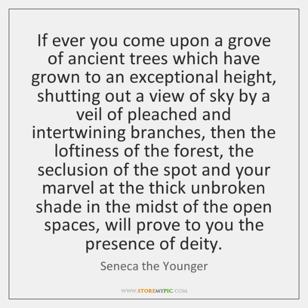 If ever you come upon a grove of ancient trees which have ...