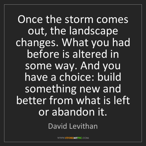 David Levithan: Once the storm comes out, the landscape changes. What...
